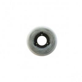 Щетка дисковая для Cleanfix RA50-150/RA 501